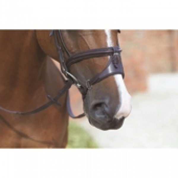 MARK TODD CAVESSON  NOSEBAND FOR PERFORMANCE